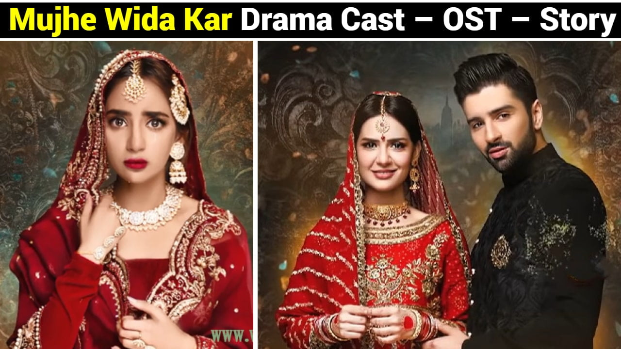 Mujhe Wida Kar Drama Cast – OST – Story